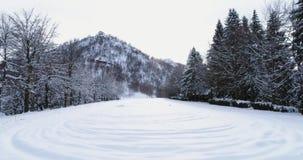 Antena delantera sobre campo nevado de la montaña alpina cerca del bosque del bosque del pino en invierno cubierto Montañas de Eu almacen de video