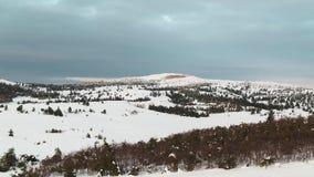 Antena desde arriba de pinos de montaña nevosos en el medio del invierno tiro Alcohol rico del invierno almacen de video