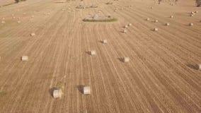 Antena do campo de trigo colhido com bolas do feno e construções de pedra filme