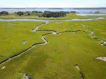 Antena do pântano de Cape Cod fotos de stock