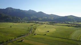 Antena do panorama bávaro dos cumes com prados verdes video estoque