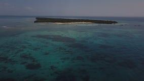 Antena: Isla de Pangavini cubierta con la selva tropical tropical, correa de piedra alrededor del bosque, visión aérea de arriba  almacen de video