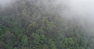 antena 4k Migrar nas montanhas, movimento à parte superior filme