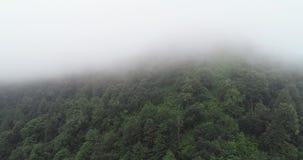 antena 4k Migrar nas montanhas, movimento à parte superior, girando o pássaro da câmera aérea video estoque