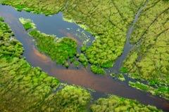 Antena krajobraz w Okavango delcie, Botswana Jeziora i rzeki, widok od samolotu Zielona roślinność w Południowa Afryka Drzewa z w Zdjęcie Stock