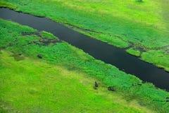 Antena krajobraz w Okavango delcie, Botswana Jeziora i rzeki, widok od samolotu Zielona roślinność w Południowa Afryka Drzewa z w Fotografia Stock