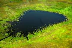 Antena krajobraz w Okavango delcie, Botswana Zmrok wodny jezioro, widok od samolotu Zielona roślinność w Południowa Afryka Drzewa Obrazy Royalty Free