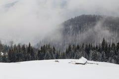 Antena krajobraz zima las obrazy stock