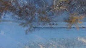 Antena ludzie biega na śniegu zakrywał żelaznego bridżowego pobliskiego las w zimie zbiory wideo