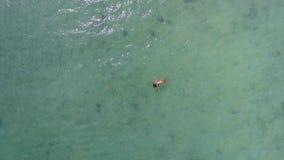 Antena: Mulher nova bonita da raça misturada na natação do biquini, encontrando-se em uma superfície da água em Crystal Clear Sea vídeos de arquivo