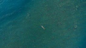 ANTENA: a mulher que flutua na superfície da água azul, nadando no mar Mediterrâneo transparente, parte superior vê para baixo, c Fotos de Stock Royalty Free