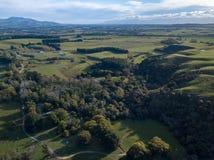 Antena, Nowa Zelandia miejscowy Bush I ziemie uprawne W Północnej wyspie, obrazy royalty free