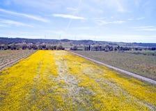 Antena od wiosna krajobrazu w Portugalia Zdjęcie Royalty Free