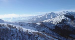 Antena posterior en el pico de montaña blanco de la nieve en valle que revela del invierno Forest Woods Establisher de las montañ metrajes