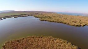 Antena salvaje del delta de Danubio almacen de video