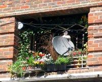 Antena satelitarna na balkonie z kwiatami Zdjęcia Stock
