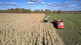 Antena silosuje żniwiarzów gromadzeń się kukurydzanego ulistnienie dla karmu zbiory wideo