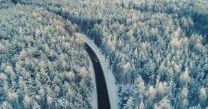 Antena strzał na samochodzie poruszającym na drodze przez głębokiego lasu 4K zdjęcie wideo