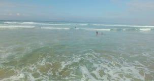 Antena strzał surfingowowie Łapie fala w oceanie zdjęcie wideo