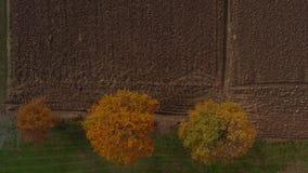 Antena strzał trutnia latanie nad zaorany pole i skrzyżowanie drzew w hedgerow, wibrujący jesieni ulistnienie zbiory