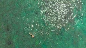 Antena strza? m?oda kobieta snorkeling w otwartego morza dopatrywania egzocie i koralach ?owi zbiory wideo