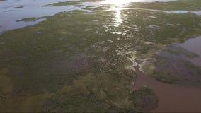 Antena strzelał Paranà ¡ rzeka blisko Wiktoria zdjęcie wideo