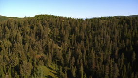Antena strzelająca las i góry zbiory wideo