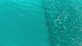 ANTENA: uma pesca da natação do mergulhador da pessoa no mar Mediterrâneo claro, água transparente profundamente azul, férias c d vídeos de arquivo