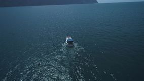 ANTENA: Una multitud de delfínes salta del agua al lado del barco Los delfínes nadan delante del barco delfines almacen de metraje de vídeo
