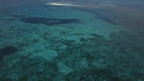 Antena: Una pequeña isla, una isla perdida, agua azul hermosa, una isla para dos, Zanzíbar, Maldivas almacen de video