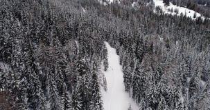 Antena vertical aérea dianteira acima do trajeto longo da fuga nevado com mau tempo forestCloudy das madeiras Dolomites do invern vídeos de arquivo