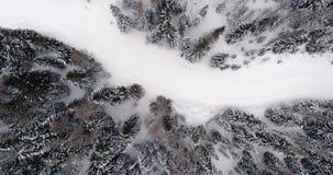 Antena vertical aérea lateral acima do trajeto nevado da fuga com mau tempo forestCloudy das madeiras Cumes do italiano das dolom filme