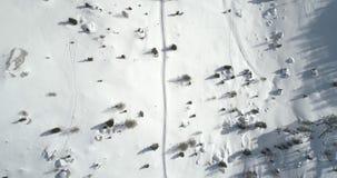 Antena vertical de arriba delantera sobre tierra nevosa con los árboles a lo largo de la trayectoria del rastro Día asoleado Mont almacen de video