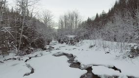 ANTENA: Voo sobre o rio no inverno video estoque