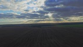 ANTENA: Vuelo sobre el campo de trigo en puesta del sol almacen de video