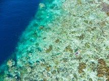Antena wierzchołka puszka widoku rafy koralowej tropikalny morze karaibskie, turkusowa błękitne wody Indonezja Moluccas archipela zdjęcia stock