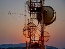 Antenas de la torre de la telecomunicación con puesta del sol Fotos de archivo