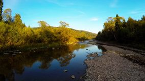 Antenn över floden i skog lager videofilmer
