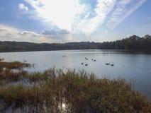 Antenn av sjön Redman i William Kain Park i Jacobus, Pennsylva Royaltyfri Foto
