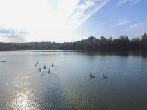 Antenn av sjön Redman i William Kain Park i Jacobus, Pennsylva Fotografering för Bildbyråer
