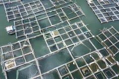 Antenn: Damm för fisklantgård bali indonesia Royaltyfri Foto