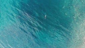 ANTENN: ett fiske för persondykaresimning i den kristallklara medelhavet, djupblått genomskinligt vatten, sommarsportsemester c stock video