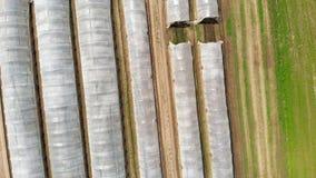 Antenn: för fågel` s för öga för överkant sikt ner av växthuset i rad och grönsak odlade fält, industriellt jordbruk lager videofilmer
