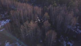 Antenn för quadrocopter som flyger ovanför gula träd i sen höst med vit snö på jordningen gem h?rligt stock video