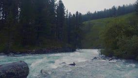 Antenn - flyga lågt ovanför turkosfärgfloden som snider dess väg till och med Springet Valley stock video