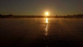 antenn 4k - den yrkesmässiga simmaren utbildar fjärilsstil på solnedgången arkivfilmer