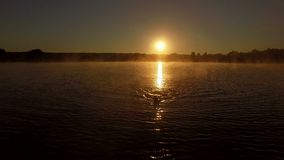 antenn 4k - den yrkesmässiga simmaren utbildar i sjön på soluppgång stock video