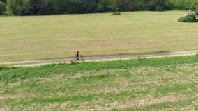 Antenn: man som cyklar längs landsvägen till och med kultiverade fält och jordbruksmark, solig dag, vänligt trans. för eco på cir arkivfilmer