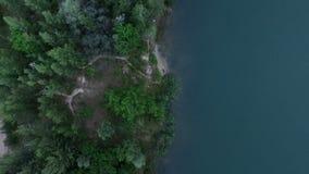 Antenn - sikt för skogsjö uppifrån arkivfilmer