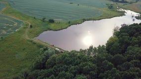 ANTENN: solnedgång över sjön och skogen 4k lager videofilmer